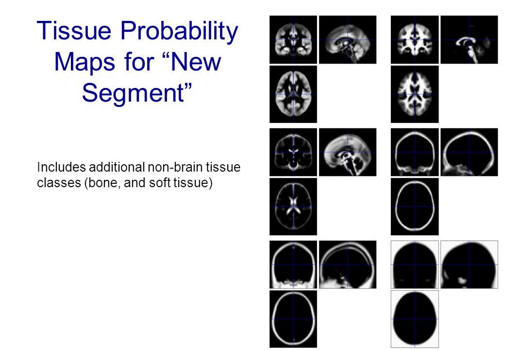 Tissue Probability Maps for New Segment