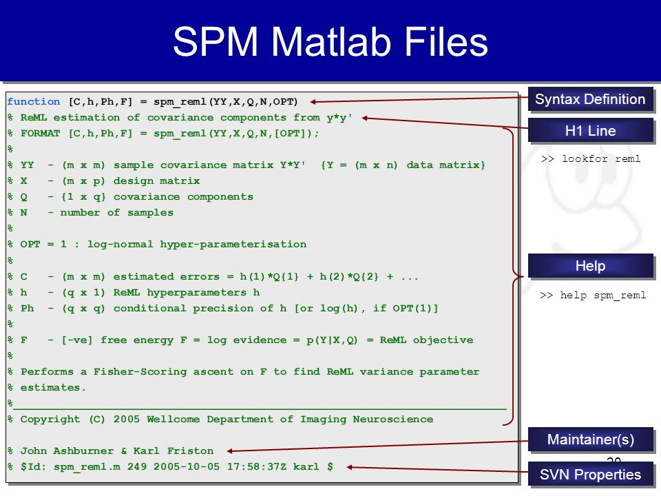SPM Matlab Files Syntax Definition H1 Line Help Maintainer(s)