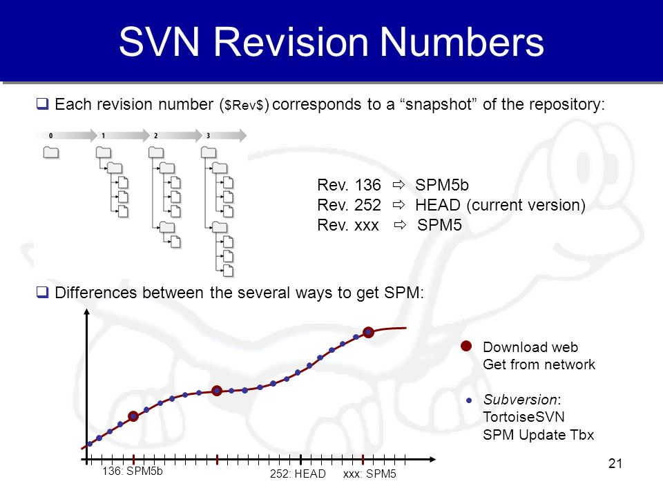 SVN Revision Numbers Each revision number ($Rev$) corresponds to a snapshot of the repository: Rev. 136  SPM5b.