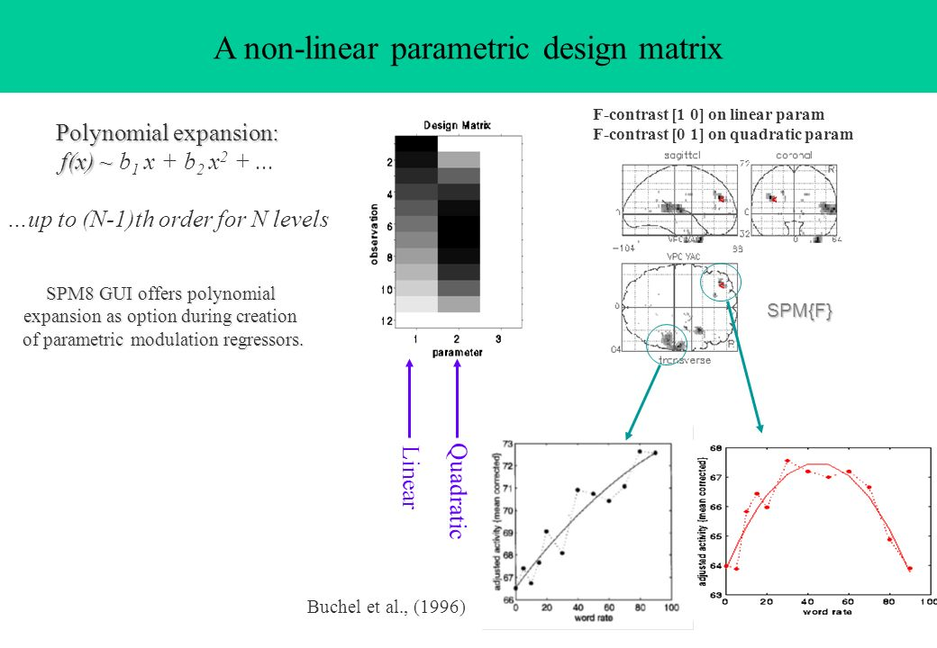 A non-linear parametric design matrix