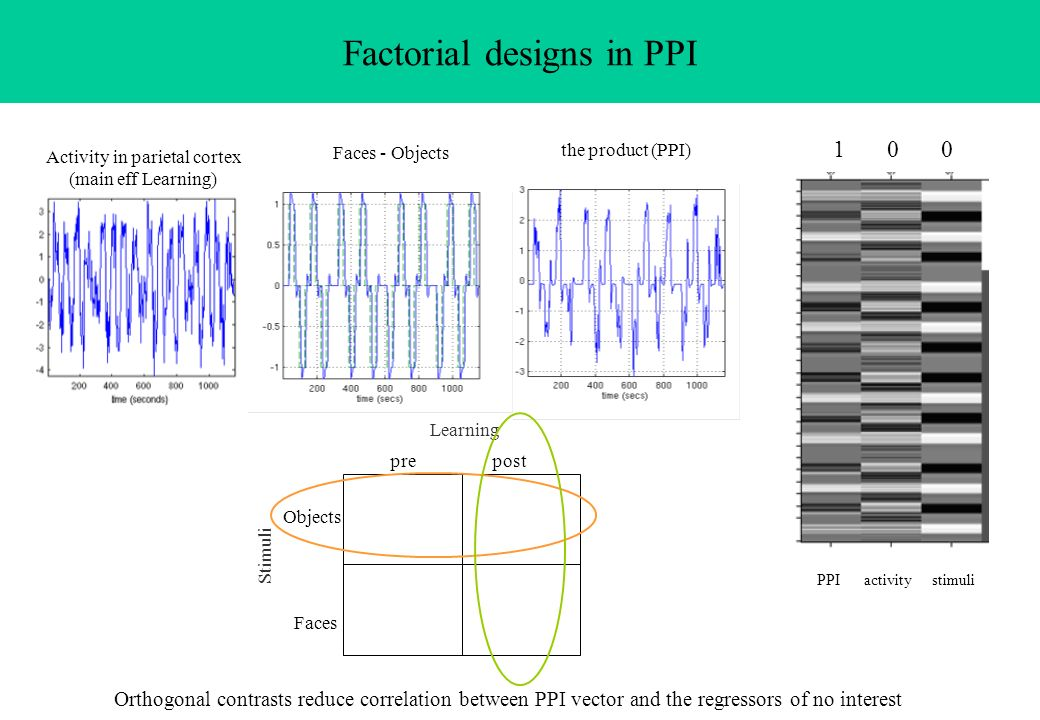 Factorial designs in PPI