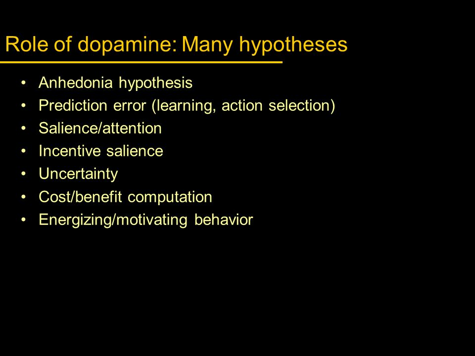 Role of dopamine: Many hypotheses