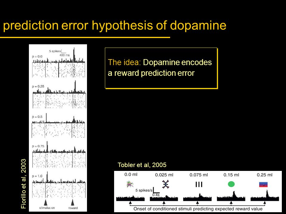 prediction error hypothesis of dopamine