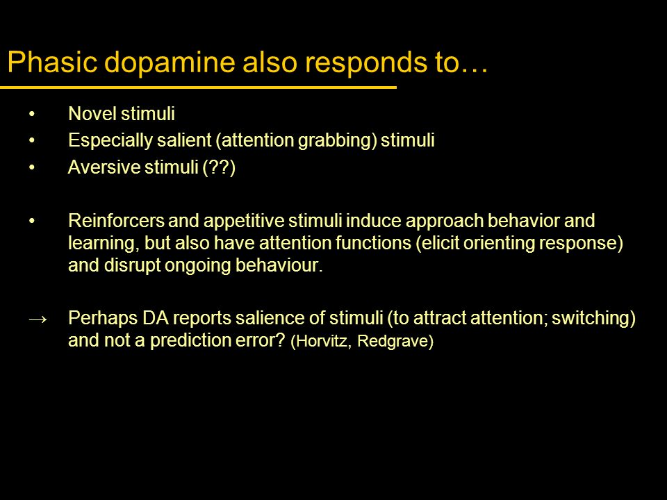 Phasic dopamine also responds to…