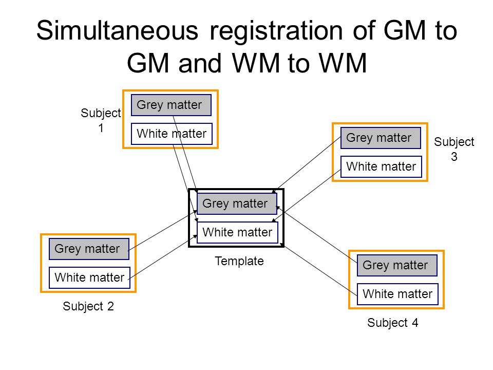 Simultaneous registration of GM to GM and WM to WM