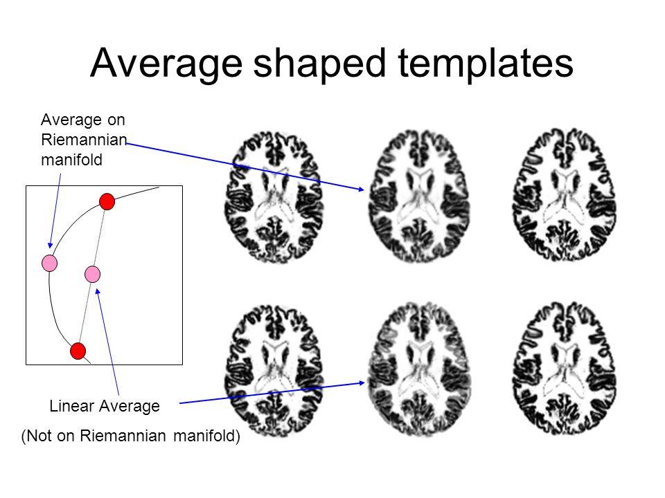 Average shaped templates