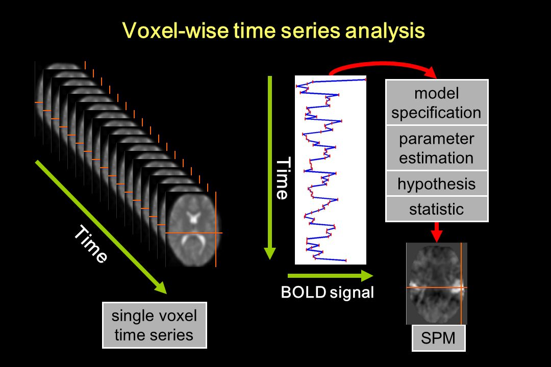 Voxel-wise time series analysis