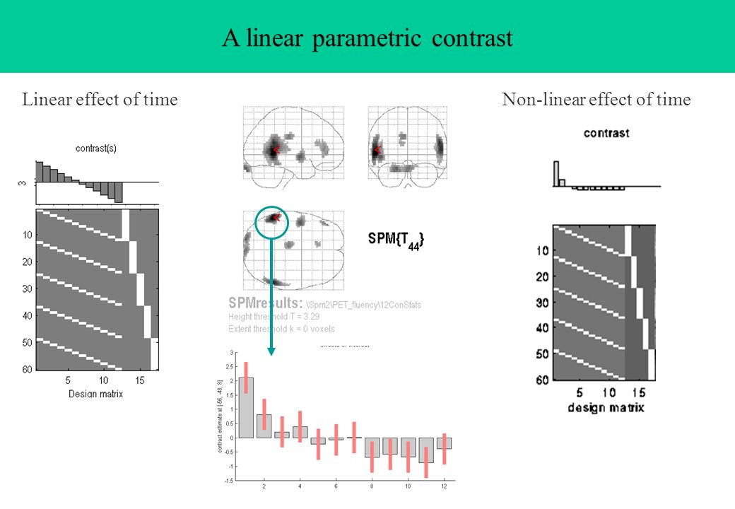 A linear parametric contrast