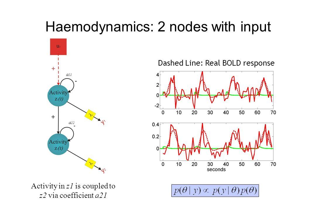 Haemodynamics: 2 nodes with input