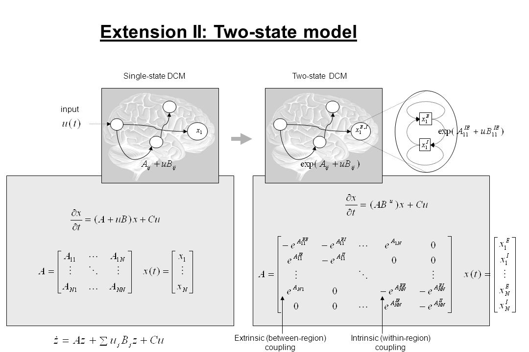 Extension II: Two-state model