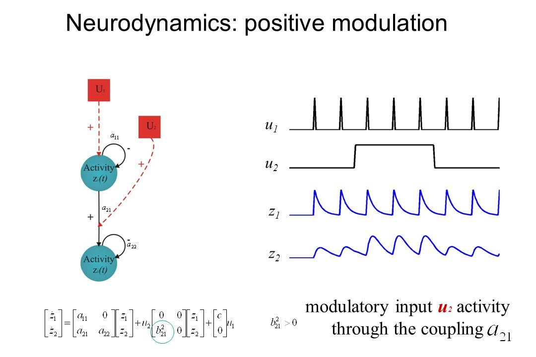 Neurodynamics: positive modulation