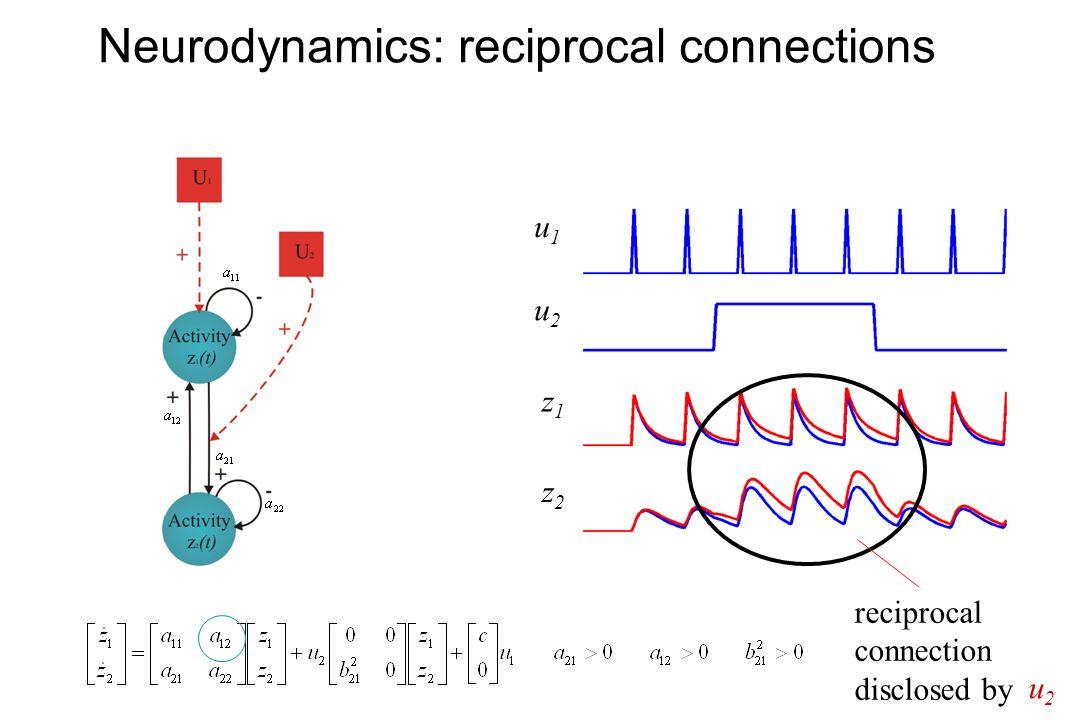 Neurodynamics: reciprocal connections