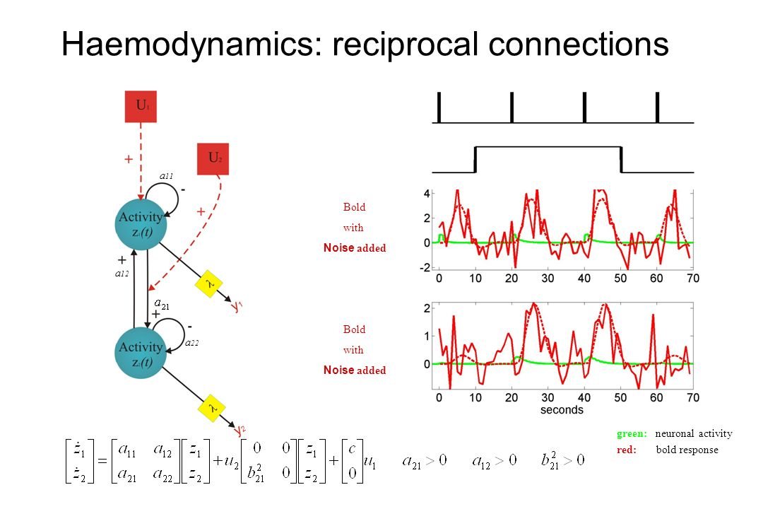 Haemodynamics: reciprocal connections