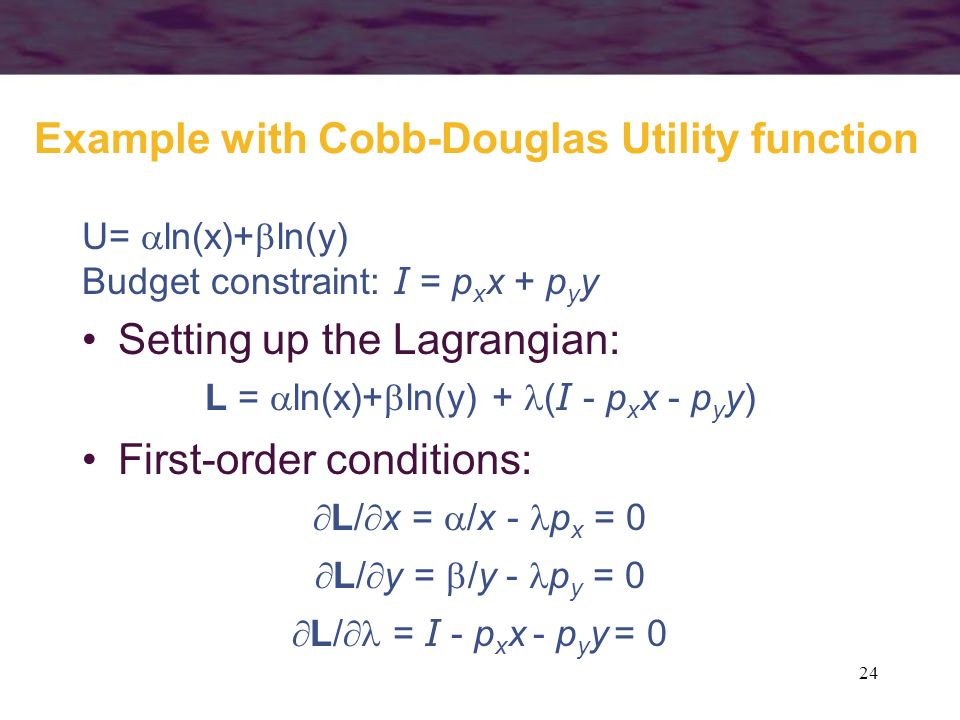 Example with Cobb-Douglas Utility function