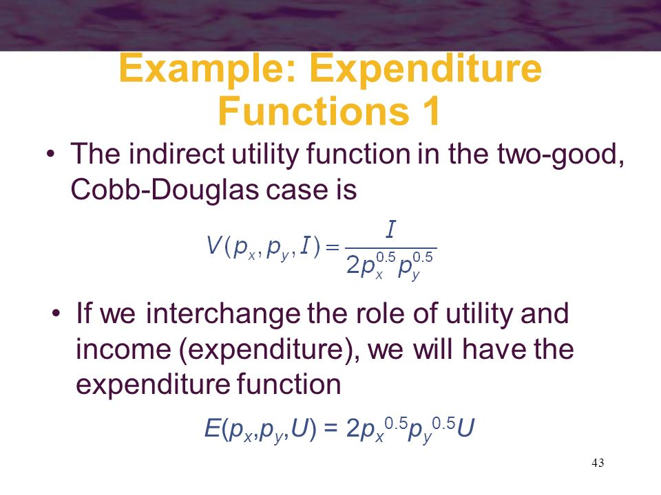 Example: Expenditure Functions 1