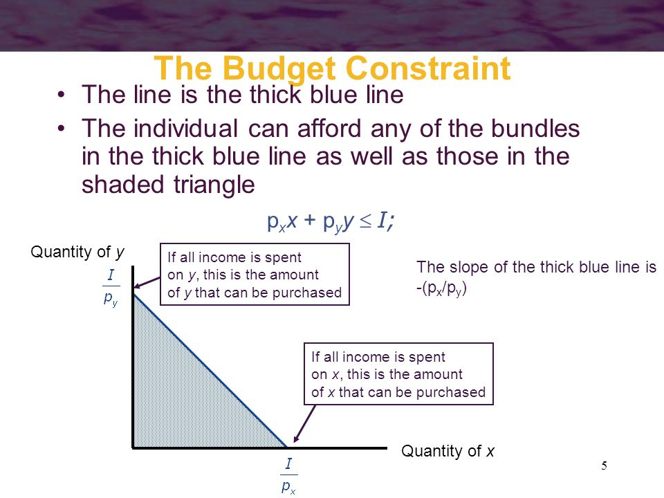 The Budget Constraint The line is the thick blue line
