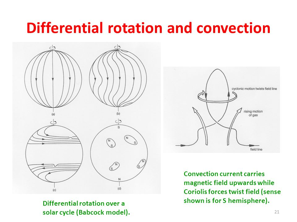 Differential rotation and convection
