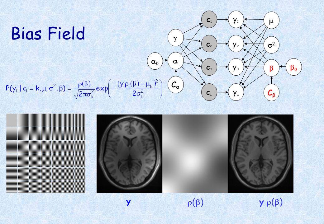 Bias Field y r(b) y r(b) y1 c1 g a y2 y3 c2 c3 m s2 b a0 Ca b0 Cb yI