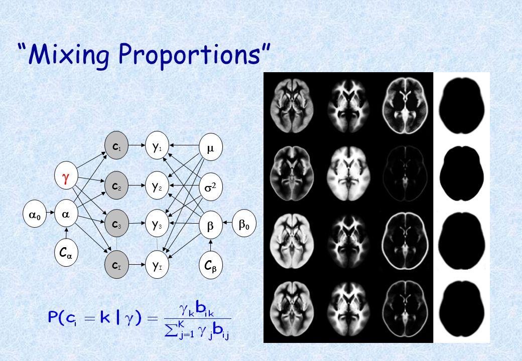 Mixing Proportions y1 c1 g a y2 y3 c2 c3 m s2 b a0 Ca b0 Cb yI cI