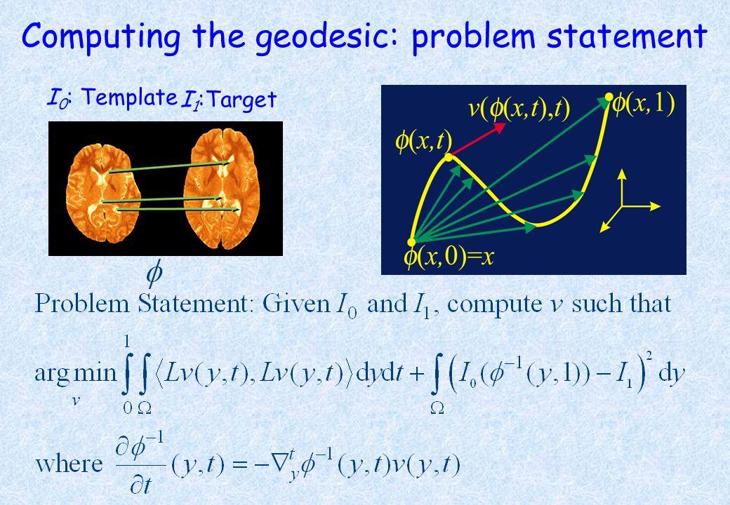 Computing the geodesic: problem statement