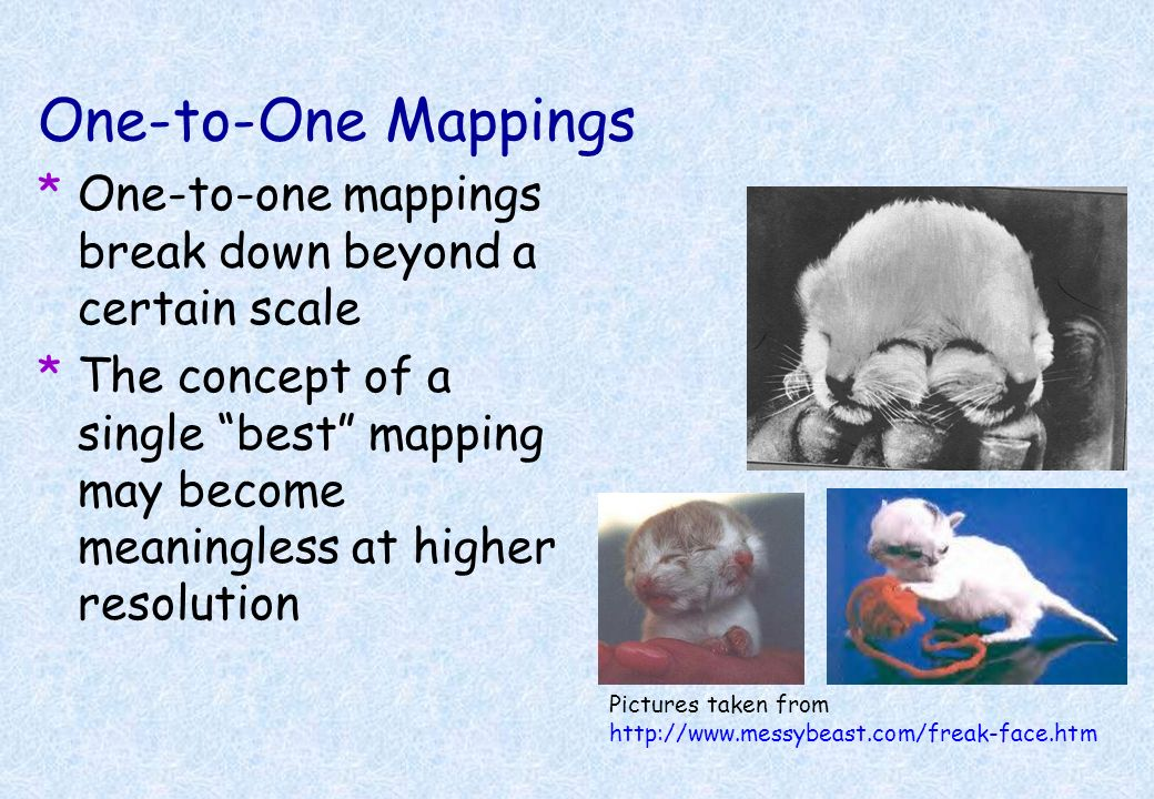 One-to-One Mappings One-to-one mappings break down beyond a certain scale.