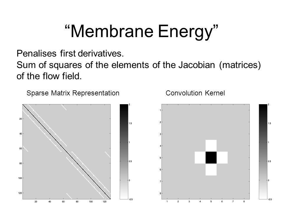 Membrane Energy Penalises first derivatives.
