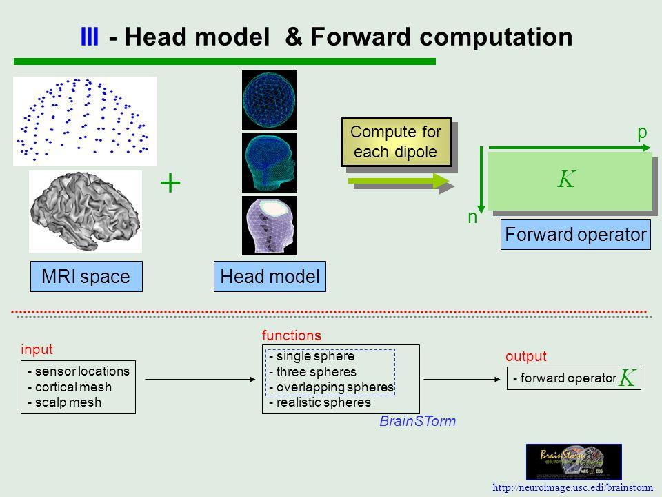III - Head model & Forward computation