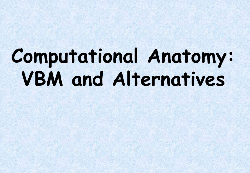 Computational Anatomy: VBM and Alternatives