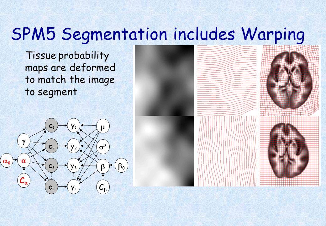 SPM5 Segmentation includes Warping