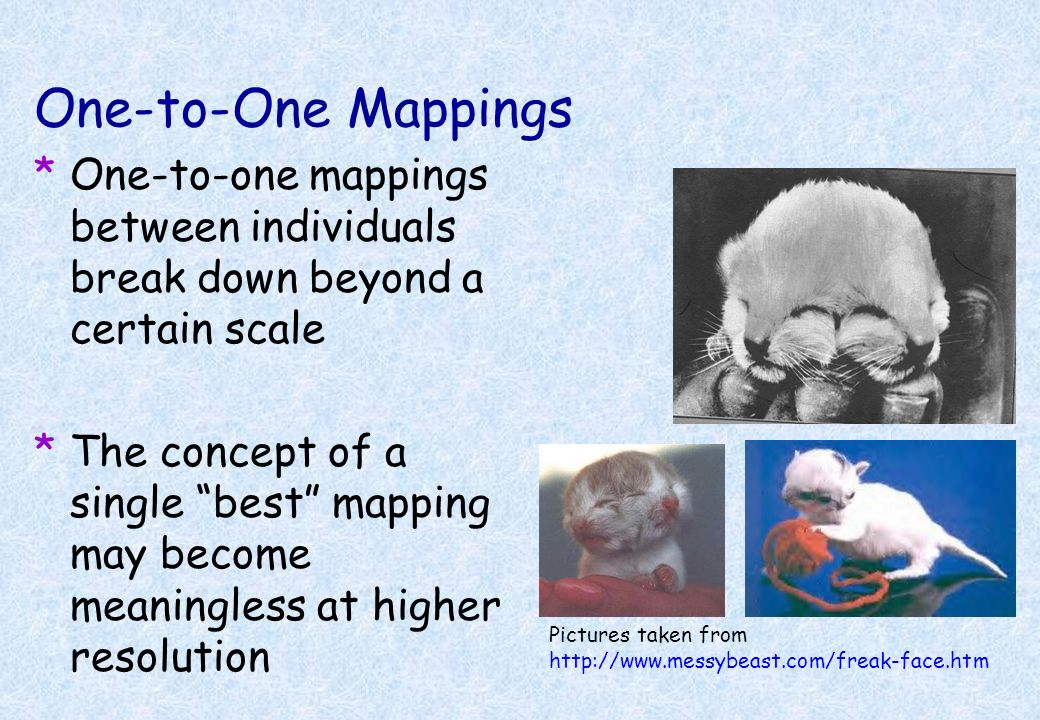 One-to-One Mappings One-to-one mappings between individuals break down beyond a certain scale.