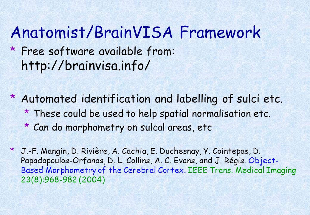 Anatomist/BrainVISA Framework