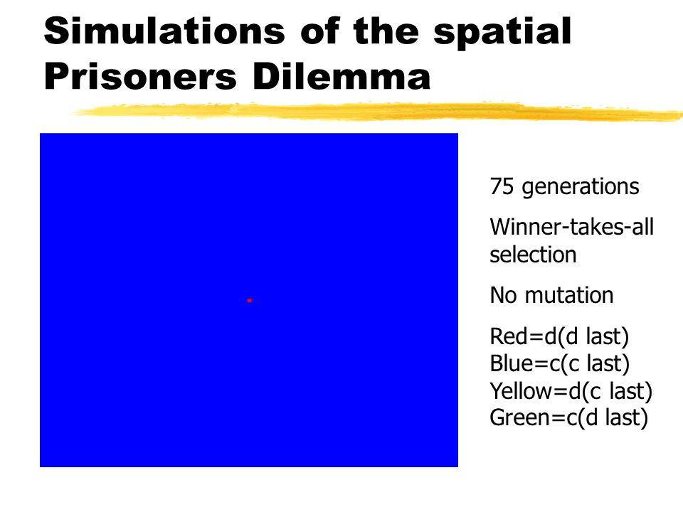 Simulations of the spatial Prisoners Dilemma