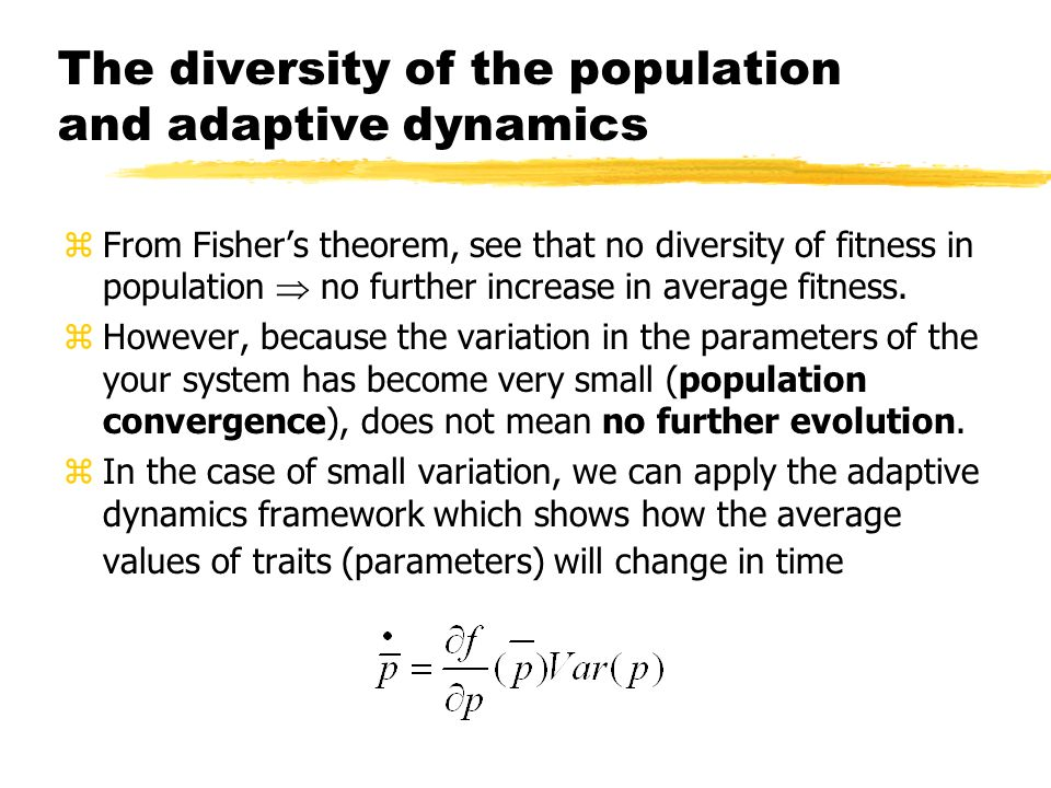 The diversity of the population and adaptive dynamics