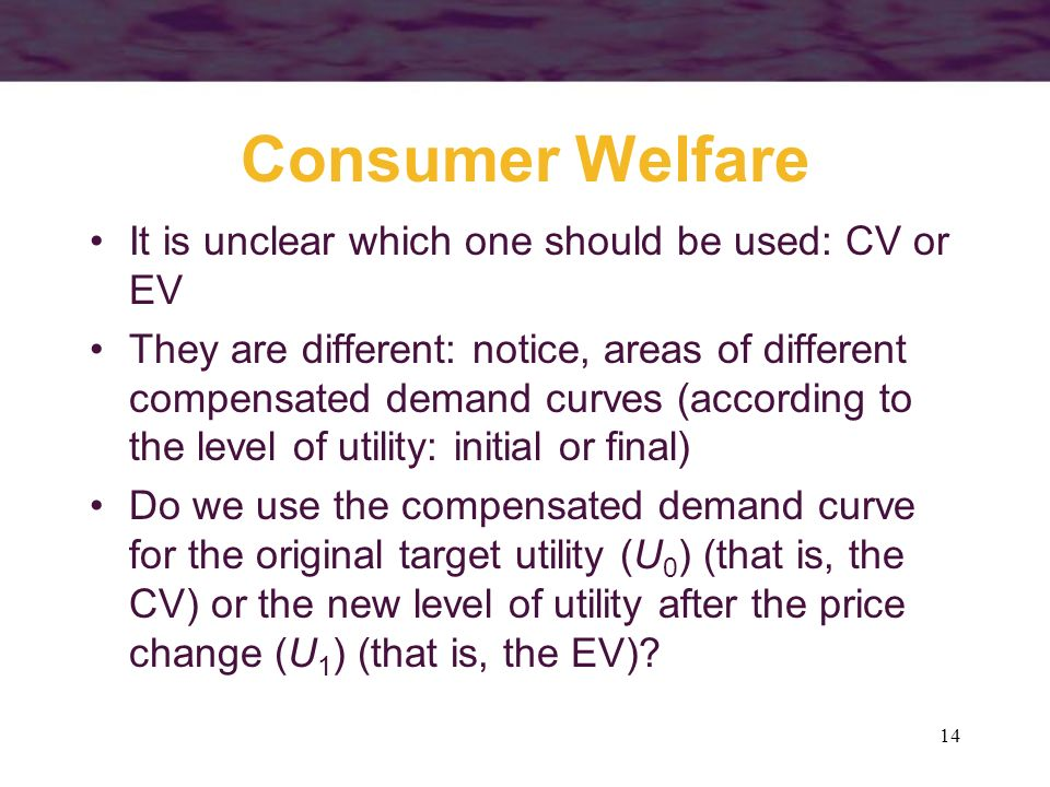 Consumer Welfare It is unclear which one should be used: CV or EV