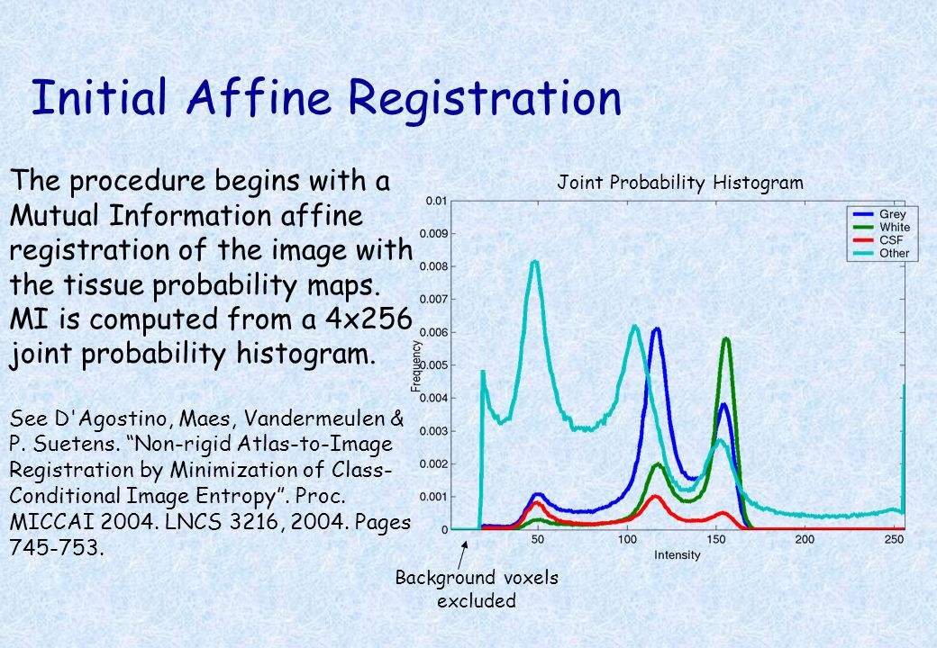 Initial Affine Registration