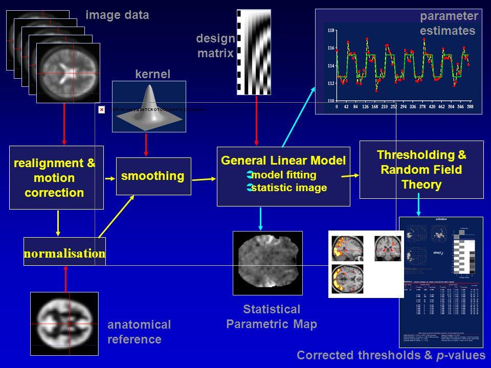 normalisation image data parameter estimates design matrix kernel