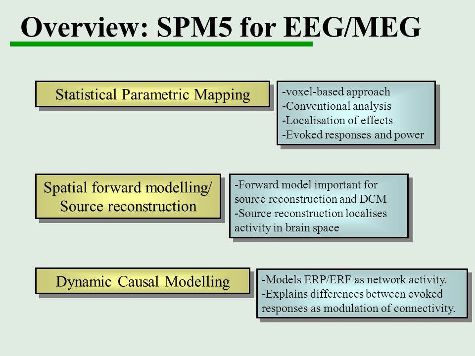 Overview: SPM5 for EEG/MEG
