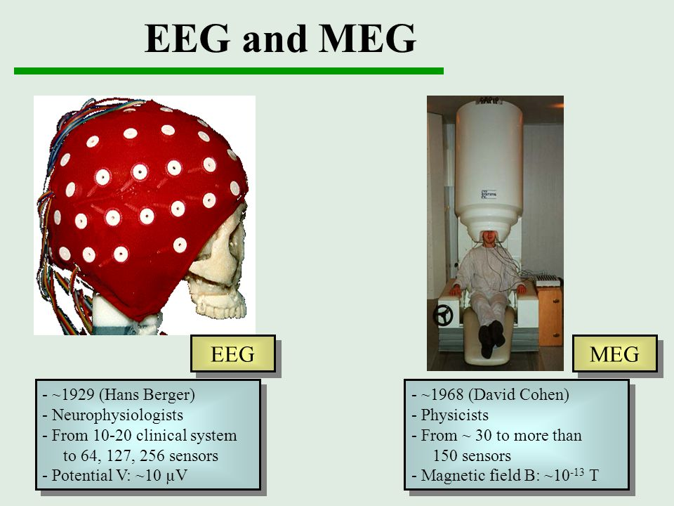 EEG and MEG EEG MEG - ~1929 (Hans Berger) - Neurophysiologists