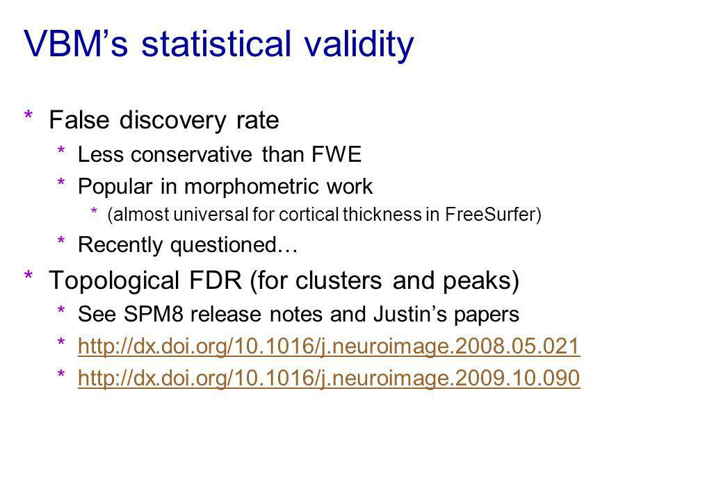 VBM's statistical validity