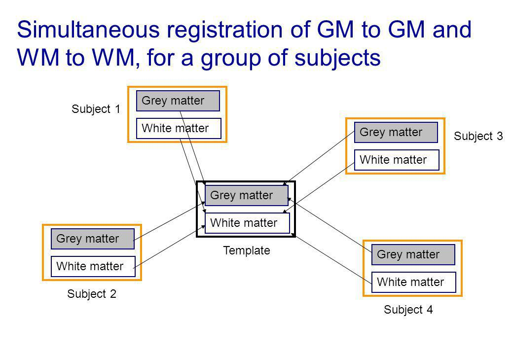 Simultaneous registration of GM to GM and WM to WM, for a group of subjects