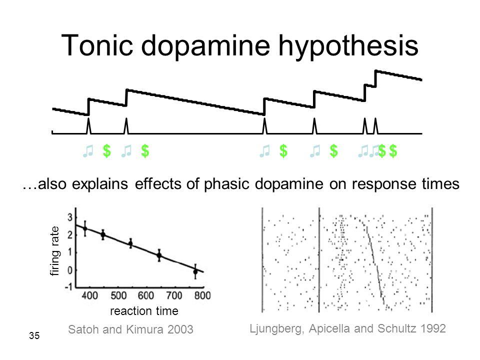 Tonic dopamine hypothesis