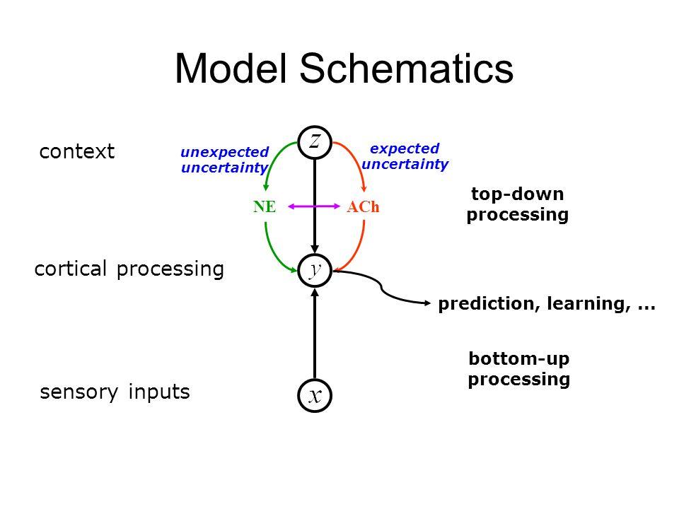 Model Schematics context cortical processing sensory inputs top-down