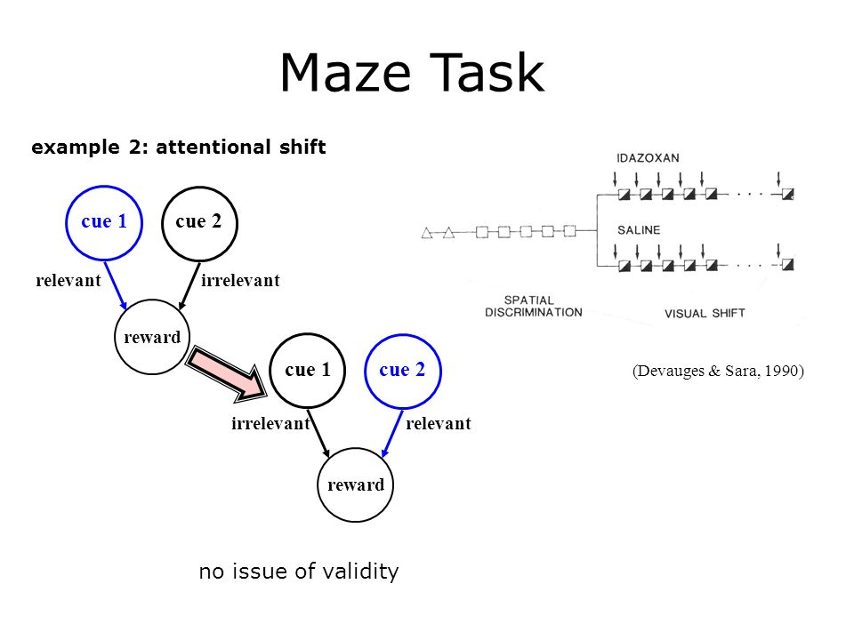 example 2: attentional shift