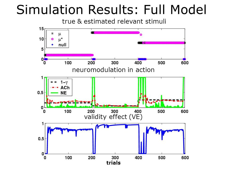 Simulation Results: Full Model
