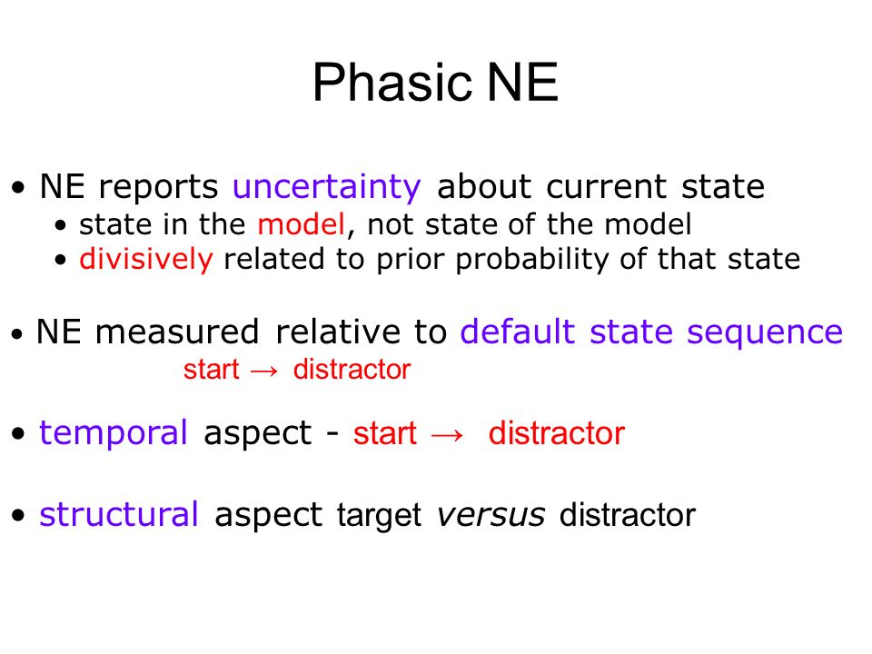 Phasic NE NE reports uncertainty about current state