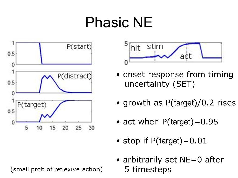 Phasic NE onset response from timing uncertainty (SET)