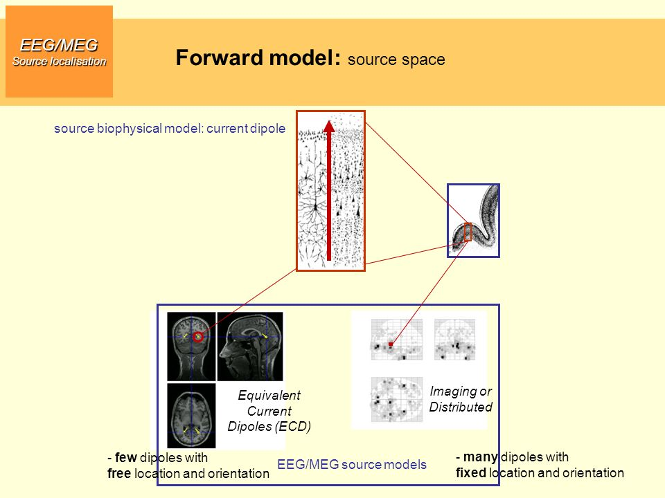 Forward model: source space