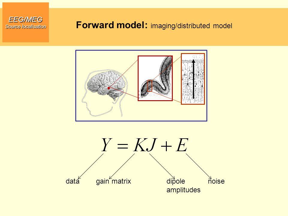 Forward model: imaging/distributed model