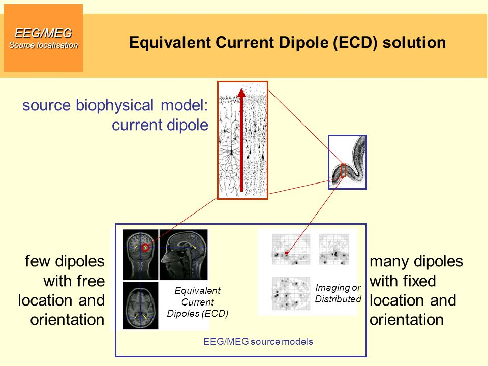 Equivalent Current Dipole (ECD) solution