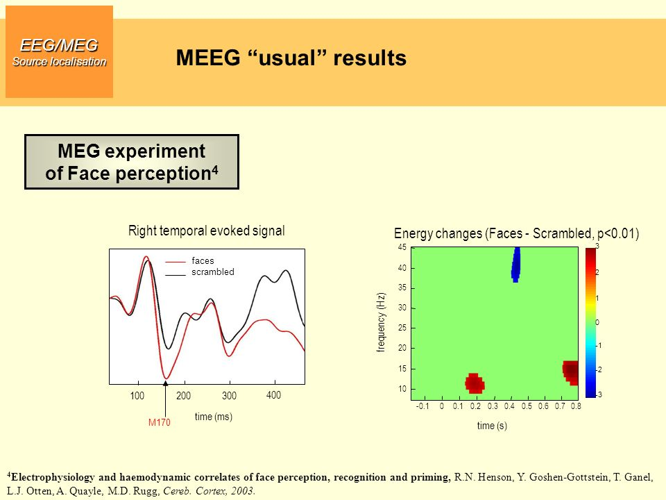 MEEG usual results MEG experiment of Face perception4 EEG/MEG